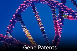 GenePatents-330T.JPG