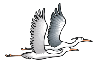 Migration-330.PNG